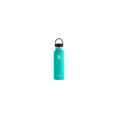 Hydro-Flask-21-Mint.jpg